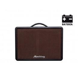 MARKTINEZ MGB 100 USB BAT AMPLI  GUITARE/BASSE BLUETOOTH FX 15W AVEC BATTERIE