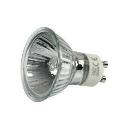 LAMPE GU 50W 220V